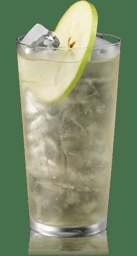 Skinny Kaapse Buchu Gin